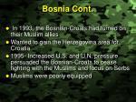 bosnia cont