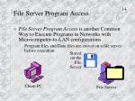 file server program access