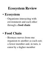 ecosystem review