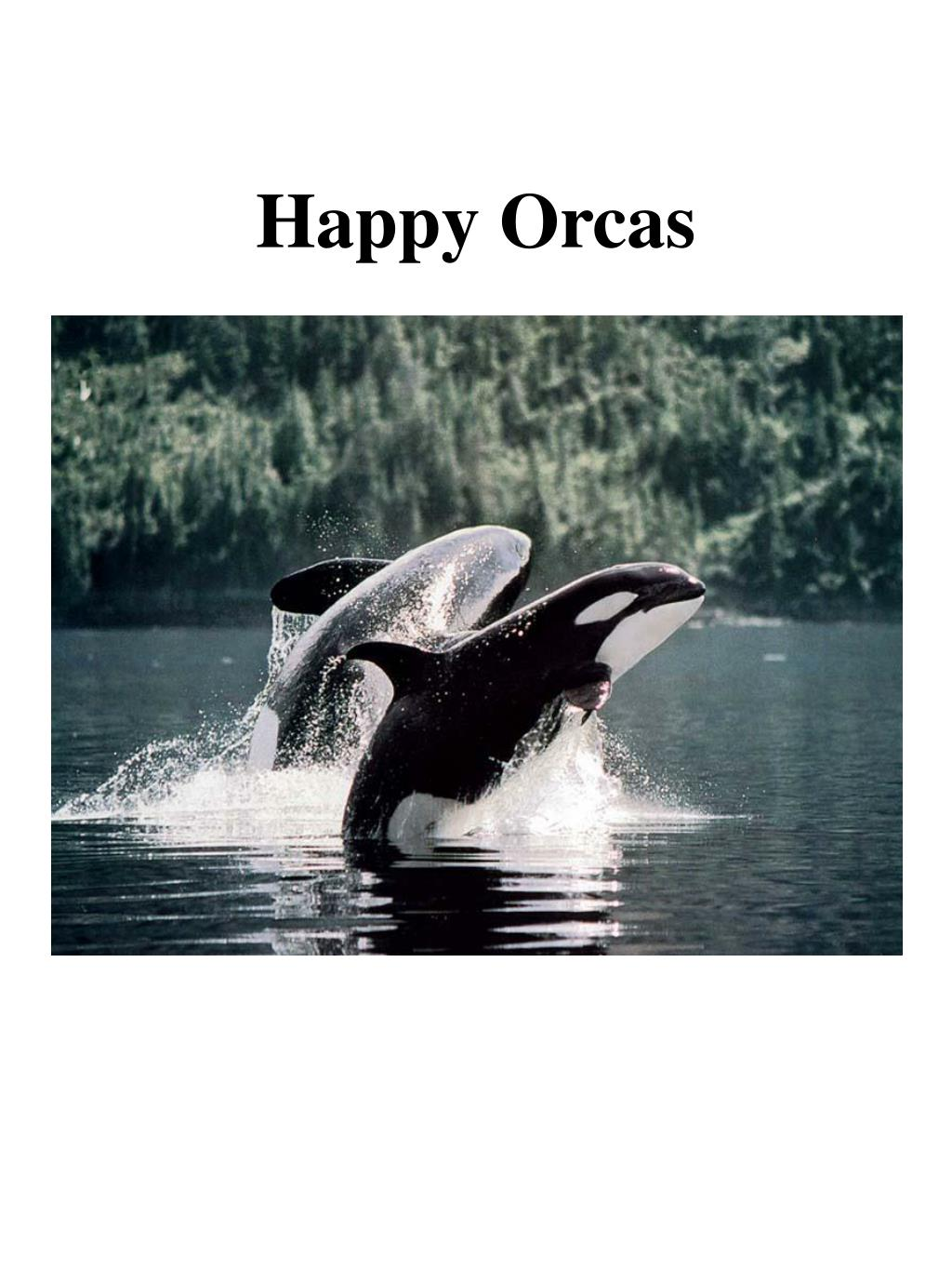 happy orcas l.