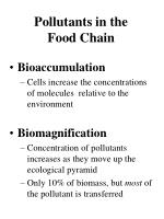 pollutants in the food chain