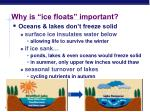why is ice floats important