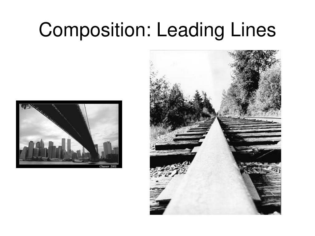Composition: Leading Lines