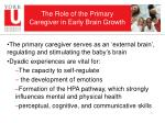 the role of the primary caregiver in early brain growth