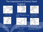 the importance of correct hand hygiene