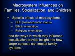 macrosystem influences on families socialization and children