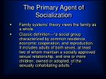 the primary agent of socialization