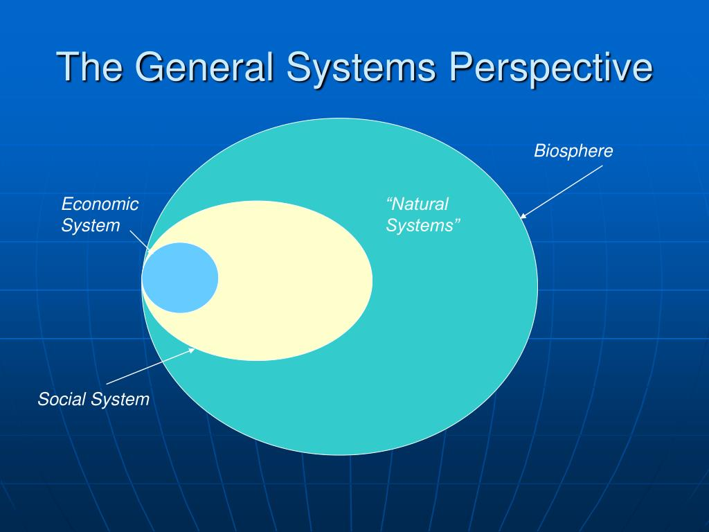 The General Systems Perspective