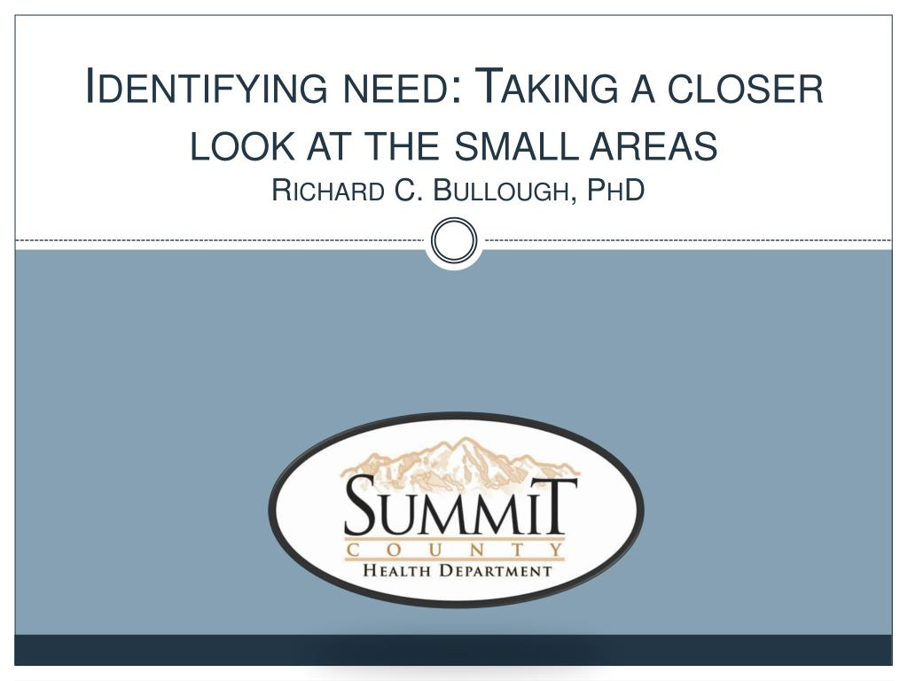identifying need taking a closer look at the small areas richard c bullough phd l.