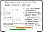 review of previous works a dna duplex bridging a cnt gap