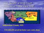 cost benefit of drug court analysis of foster care cost