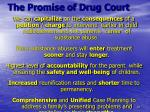 the promise of drug court