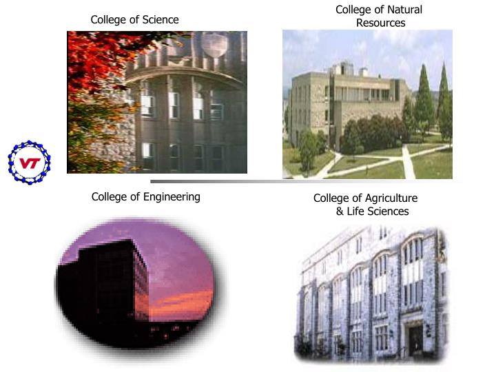 College of Natural