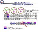 tnt metallofullerenes encapsulation of other metals