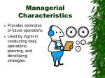 managerial characteristics