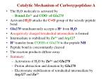 catalytic mechanism of carboxypeptidase a