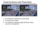 crowd synthesis with pooja nath