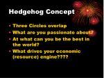 hedgehog concept52