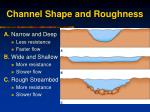 channel shape and roughness