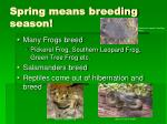 spring means breeding season