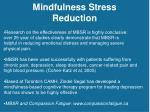 mindfulness stress reduction