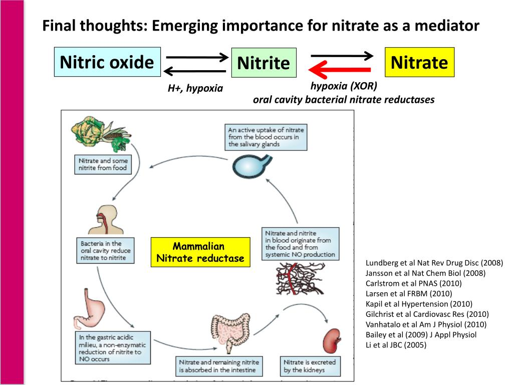 Final thoughts: Emerging importance for nitrate as a mediator