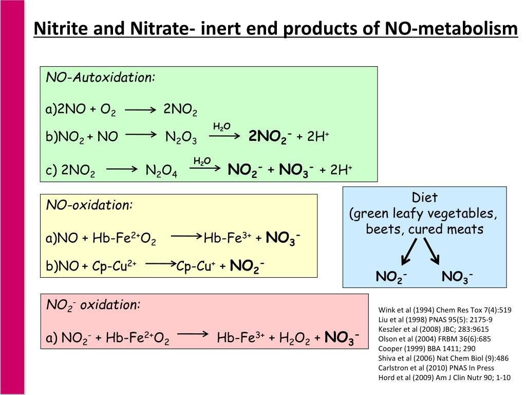 Nitrite and Nitrate- inert end products of NO-metabolism