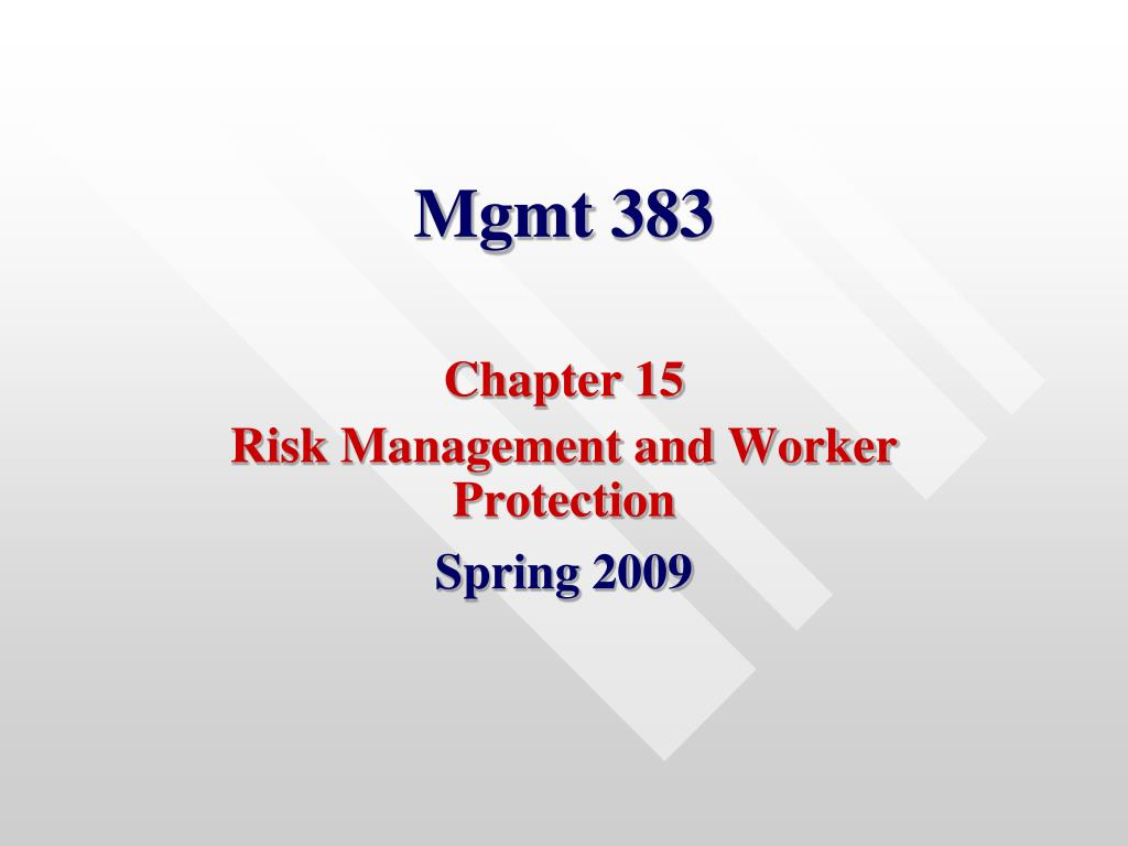 mgmt 383 l.