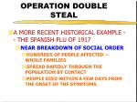 operation double steal13