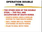operation double steal38
