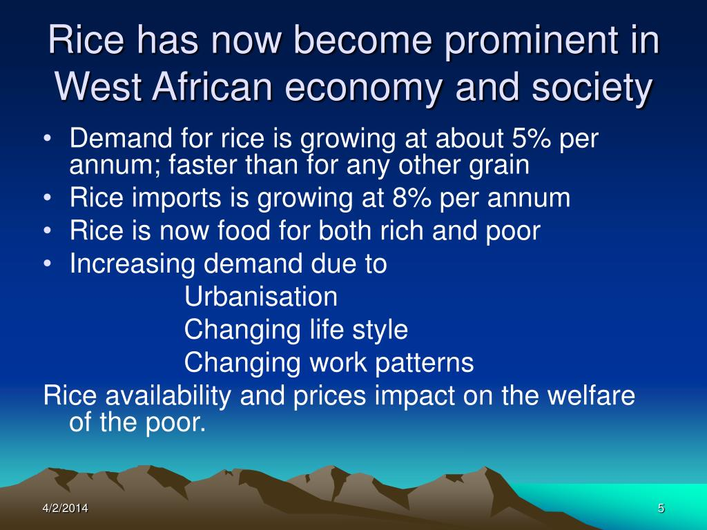 Rice has now become prominent in West African economy and society