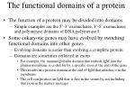 the functional domains of a protein