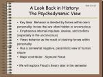 a look back in history the psychodynamic view