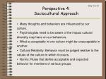 perspective 4 sociocultural approach