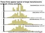 these firms appear typical of large manufacturers in brazil china and india