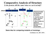 comparative analysis of structure is the protein still the same when we cut it in half