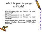 what is your language attitude