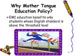 why mother tongue education policy16