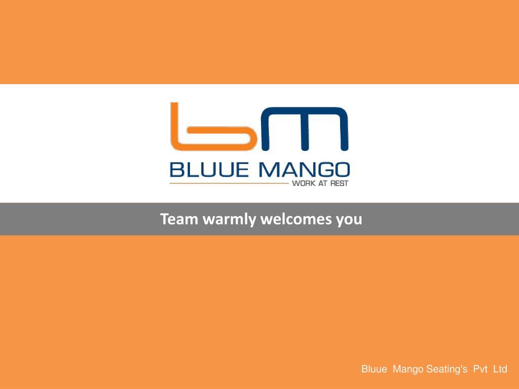 bluue mango seating s pvt ltd l.