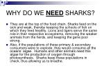 why do we need sharks
