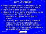 jury of appeal
