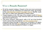 what is pesach passover