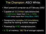 the champion asci white