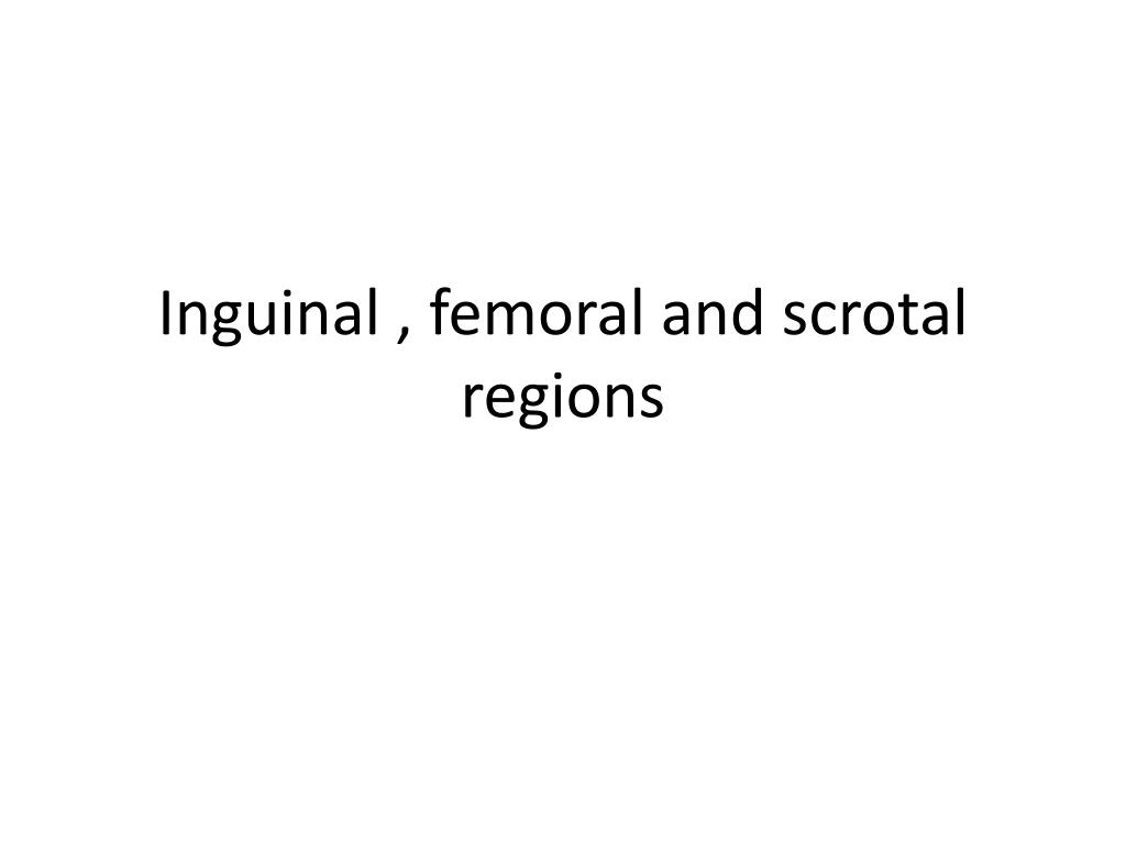 inguinal femoral and scrotal regions l.