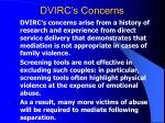dvirc s concerns