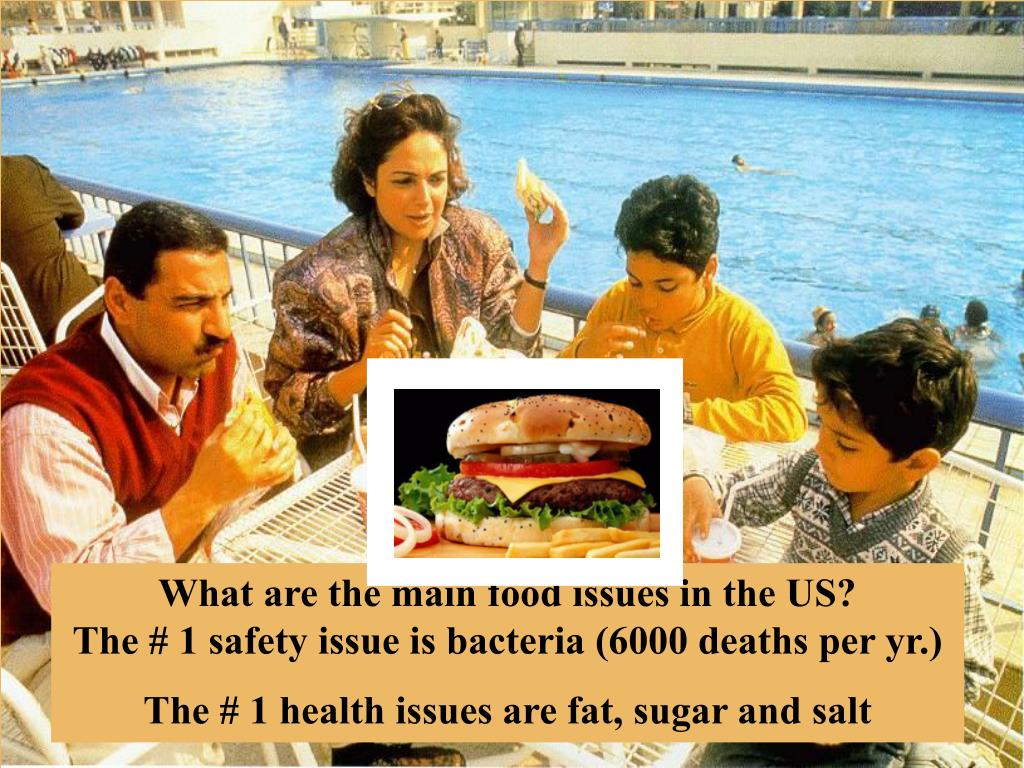 What are the main food issues in the US?