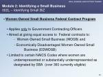 module 2 identifying a small business 002l identifying small biz