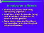 introduction to meiosis
