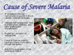 cause of severe malaria