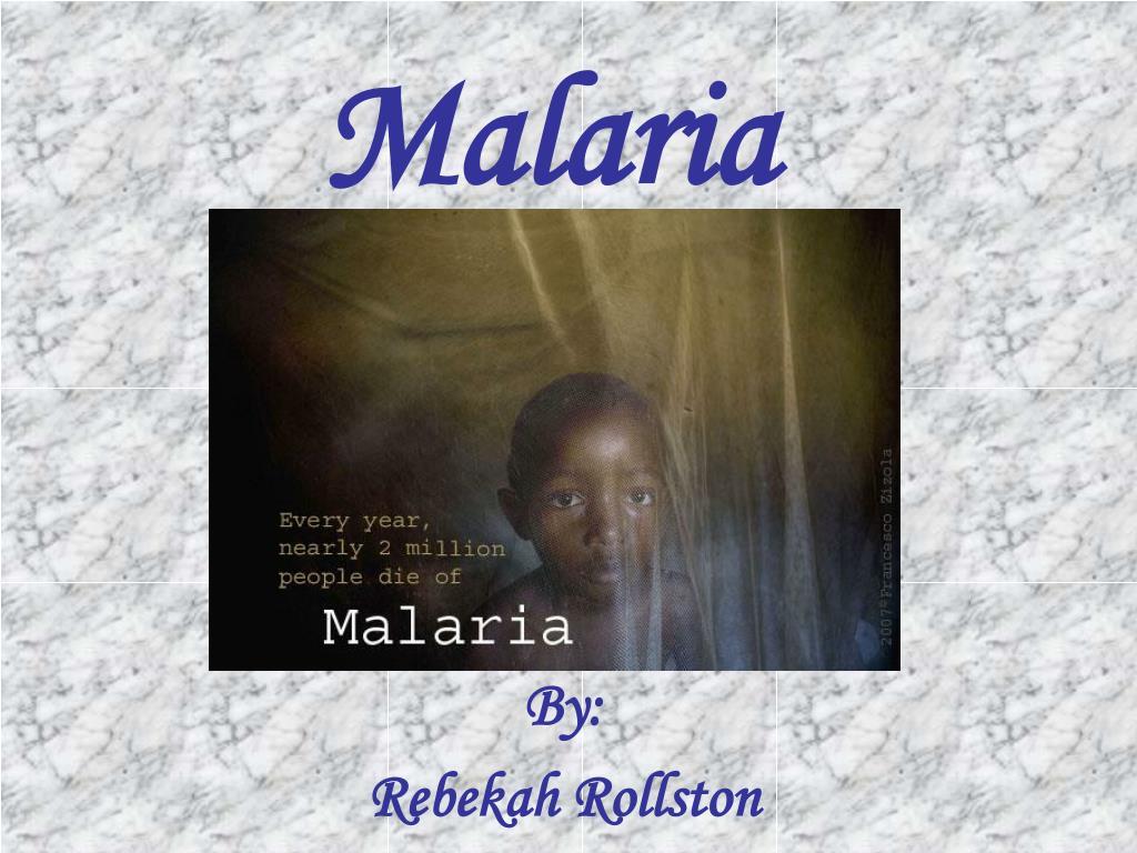 malaria l.